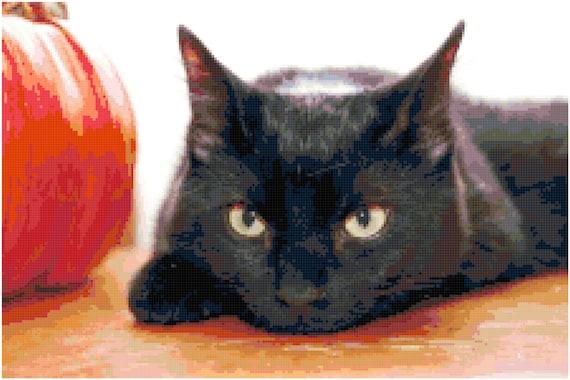 Black Cat Counted Cross Stitch Pattern Chart PDF Download by Stitching Addiction