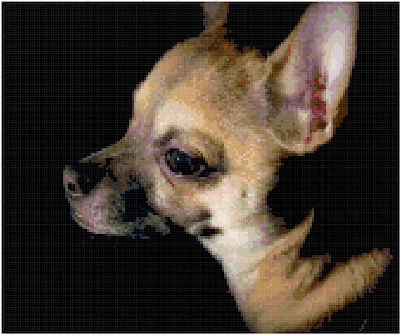 Tan Chihuahua Counted Cross Stitch Pattern Chart PDF Download by Stitching Addiction