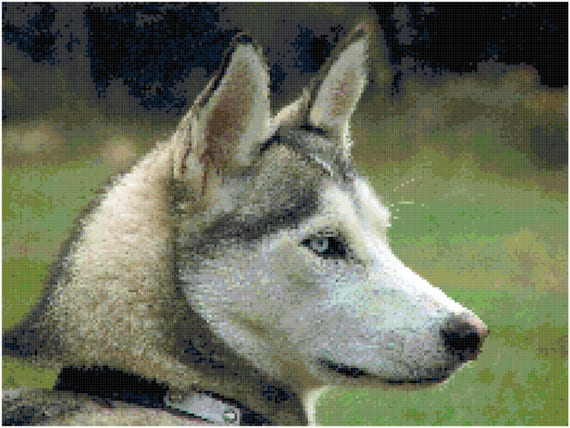 Husky Counted Cross Stitch Pattern Chart PDF Download by Stitching Addiction