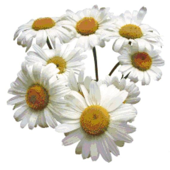 Daisy Bunch Bouquet Counted Cross Stitch Pattern Chart PDF Download by Stitching Addiction