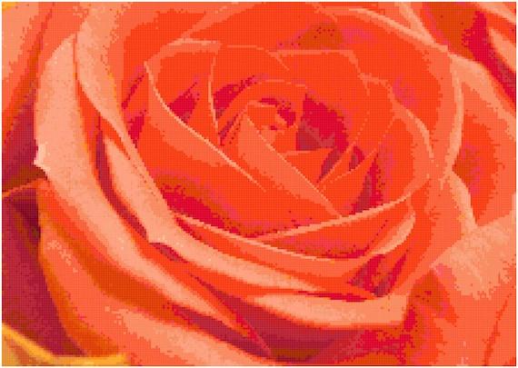Orange Rose Counted Cross Stitch Pattern Chart PDF Download by Stitching Addiction