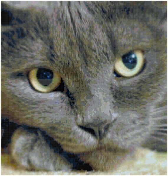 Gray Cat Counted Cross Stitch Pattern Chart PDF Download by Stitching Addiction