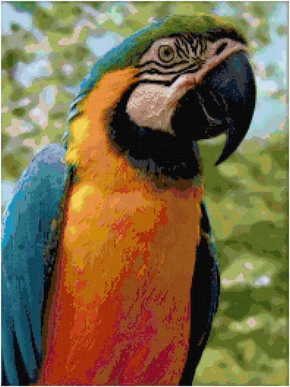 Macaw Parrot Counted Cross Stitch Pattern Chart PDF Download by Stitching Addiction