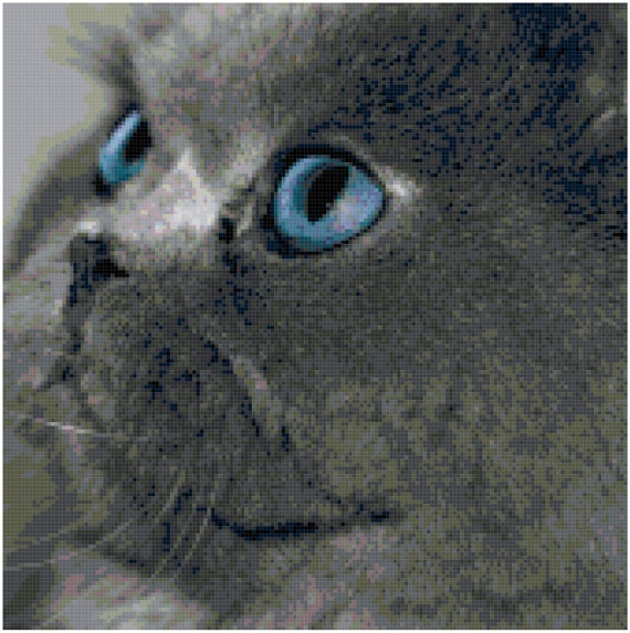 Blue Eyed Gray Cat Counted Cross Stitch Pattern Chart PDF Download by Stitching Addiction
