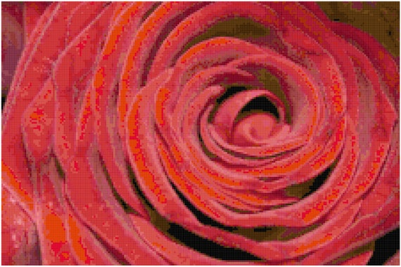 Red Velvet Rose Counted Cross Stitch Pattern Chart PDF Download by Stitching Addiction
