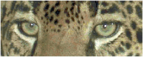Leopard Eyes Counted Cross Stitch Pattern Chart PDF Download by Stitching Addiction