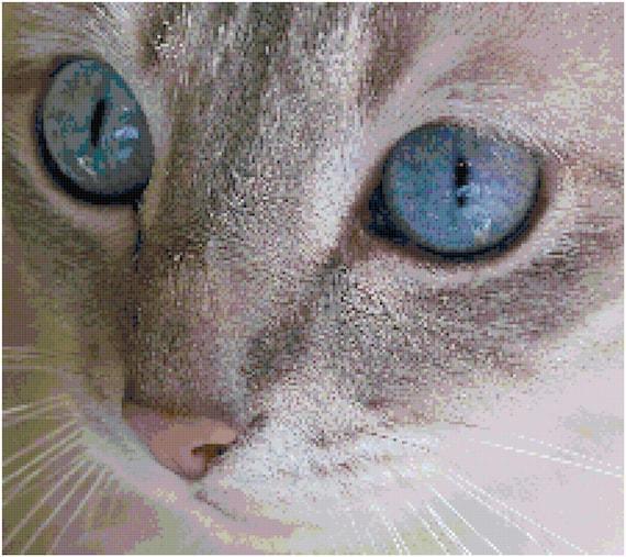 Gray Cat Blue Eyes Counted Cross Stitch Pattern Chart PDF Download by Stitching Addiction
