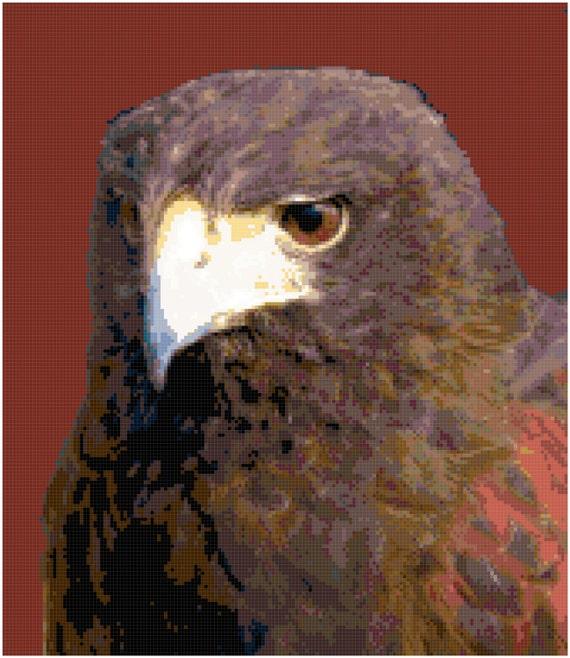 Hawk Bird of Prey Counted Cross Stitch Pattern Chart PDF Download by Stitching Addiction
