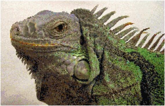 Iguana Counted Cross Stitch Pattern Chart PDF Download by Stitching Addiction
