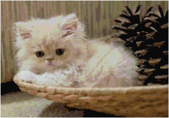 Persian Kitten Counted Cross Stitch Pattern Chart PDF Download by Stitching Addiction