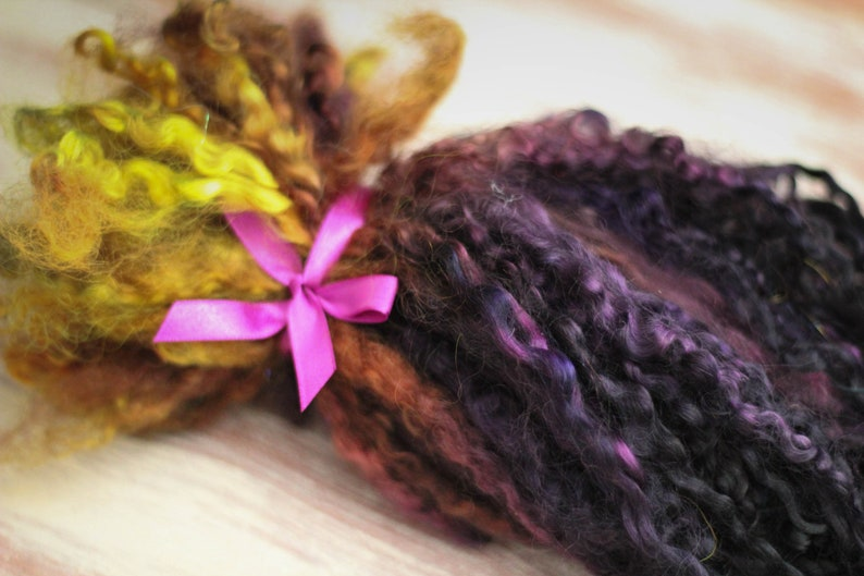 Bibliothecary  Super long Locks curls from Teeswater sheep image 0