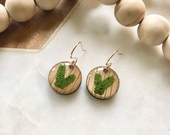 fragile ferns in resin   dainty dangle earrings   wood jewelry   pacific northwest inspired   nature lover
