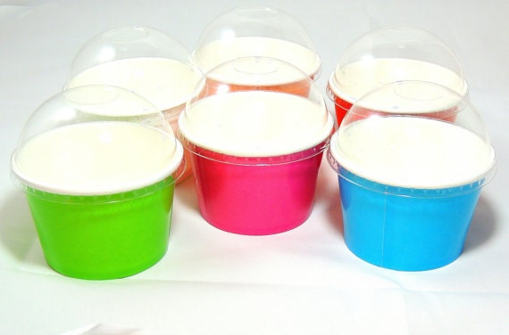 Yogurt cups Cold cups Snack Cups Lids 15 Party Cups,Choose 8oz Ice cream cups