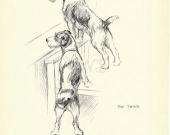 THE TWINS Dog Print, Puppy Print, Art Print, Home Decor, Paper Ephemera, Book Plate, Antique Illustration, Wall Decor, A-9