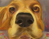 THE NOSE, 8 X 8  original oil painting of basset hound by Lesley Mills from Merlin's Garden Free Domestic Shipping