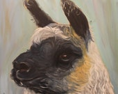 LOLA THE LLAMA, 20 x 20  Original Oil Painting by Lesley Mills from Merlin's Garden Free Domestic Shipping
