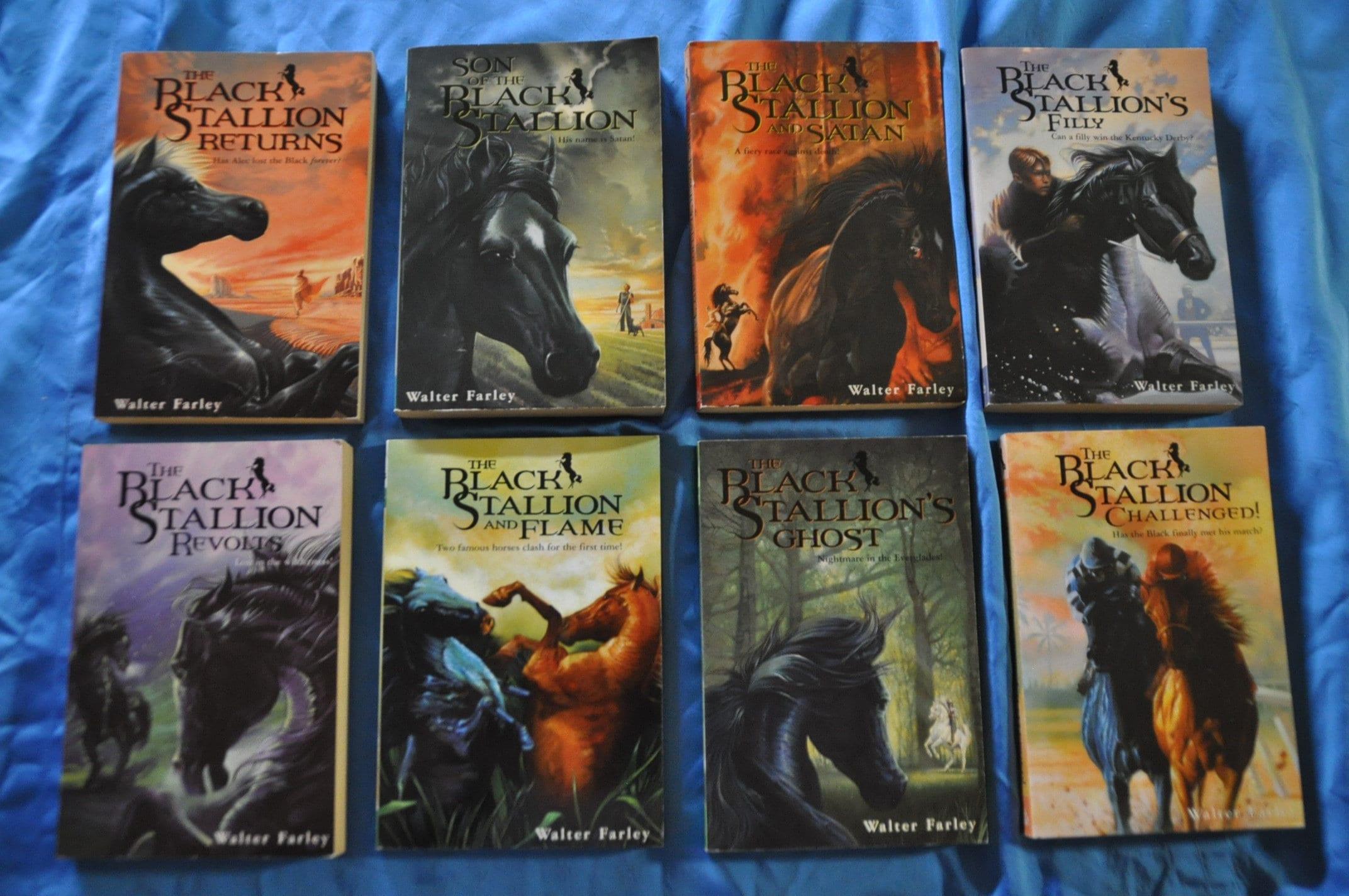 The Black Stallion Book