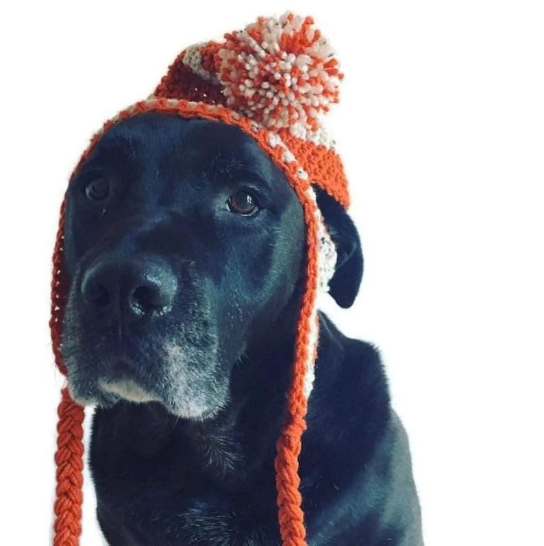 Crochet Dog Pompom Hat  one size  medium to large breeds  image 0