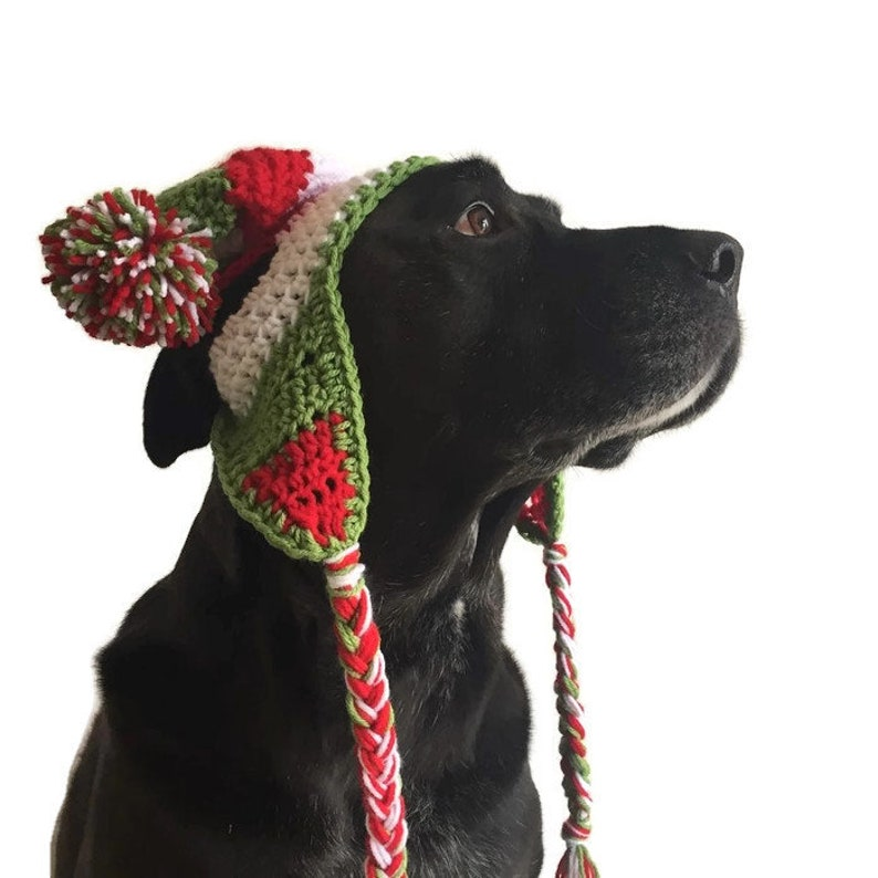 Crochet Dog Pompom Hats one size for medium to large breeds  image 0