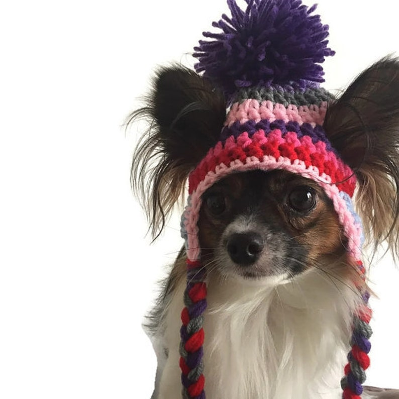 Crochet Dog Pompom Hats one size for tiny-small dog breeds  image 0