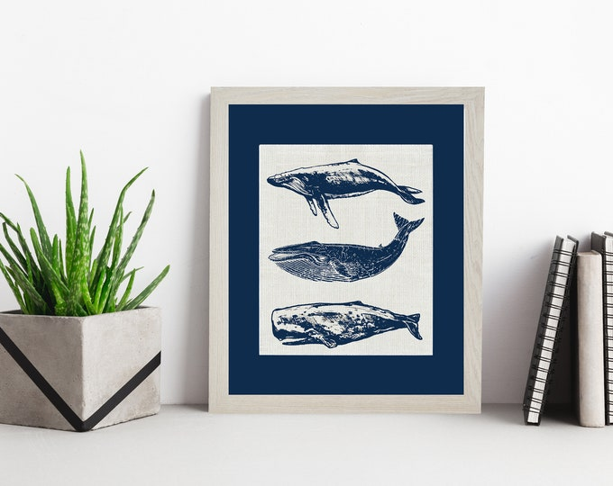Featured listing image: Group of Whales  Navy Matting  Framed or Unframed   Burlap Art   Wall Art   Nautical   Whale Art   Burlap   Personalized Gift   Burlap Print