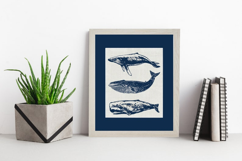 Group of Whales  Navy Matting Framed or Unframed  Burlap Art image 0