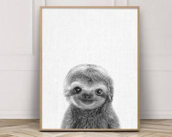 Nursery Decor, Sloth Print, Cute Baby Sloth Photo, Nursery Wall Art, Animals Art Photo, Baby Shower Gift, Animals Kids Room Printable Decor
