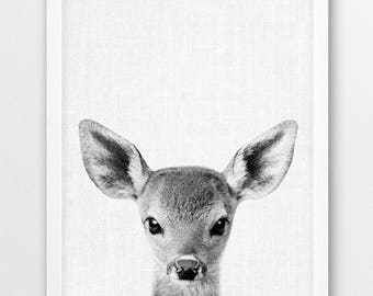 Deer Print, Deer Fawn Photo, Woodlands Animals Photography, Nursery Animal Wall Art, Baby Animal Black White Photography, Kids Room Decor