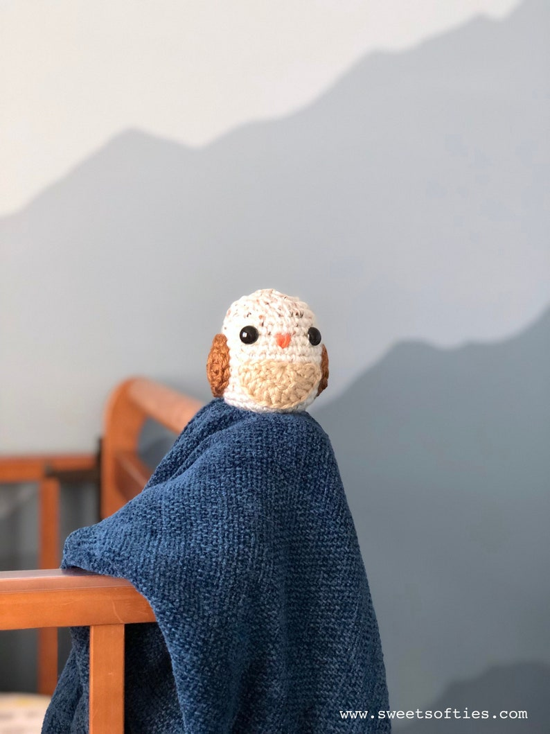 Free Amigurumi Crochet Pattern Tutorial Owl Bean Quick Easy Etsy