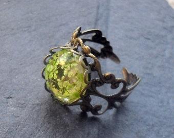 REAL FLOWER RING,  fern ring, Victorian ring, botanical ring, flower ring, flower jewelry, real flowers, gardeners gift, gift women, aqua