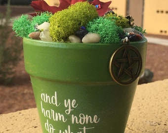 Potted Gift Gardens