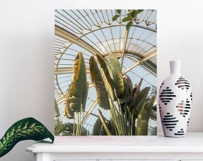 Palm Print - Botanical Wall Print