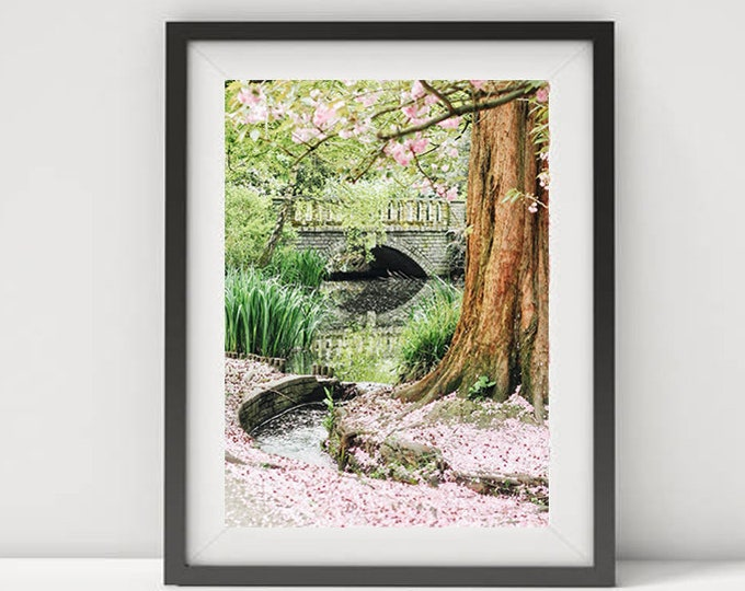 London print, London photography, Blossoms print, Pink decor, London wall decor, England, Britain print, London park print, London Spring