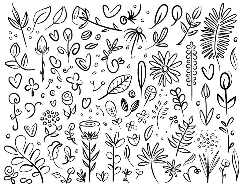 Plant & Flower Specimen Doodle Clip Art Set  PNG SVG VECTOR image 0