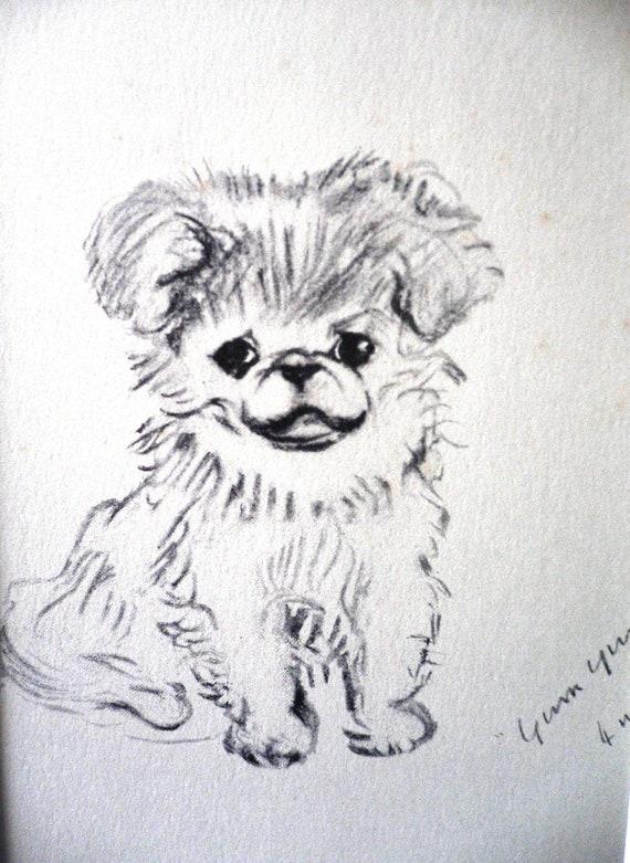 WIRE HAIRED DACHSHUND CUTE DOG SKETCH PRINT READY MOUNTED LUCY DAWSON ART PRINT