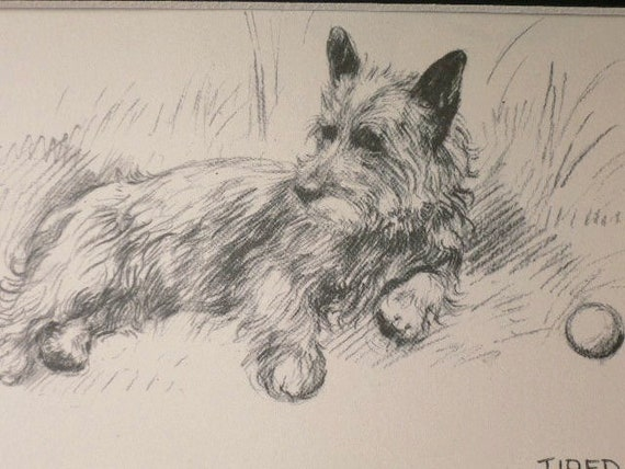 CAIRN TERRIER WITH A BALL OLD 1930/'S BOOKPLATE DOG ART PRINT READY MOUNTED