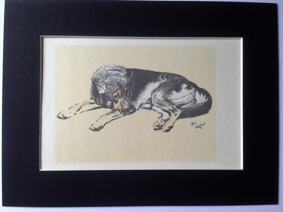 Irish Wolfhound Dog Cecil Aldin 1930/'s  ~ LARGE New Blank Note Cards
