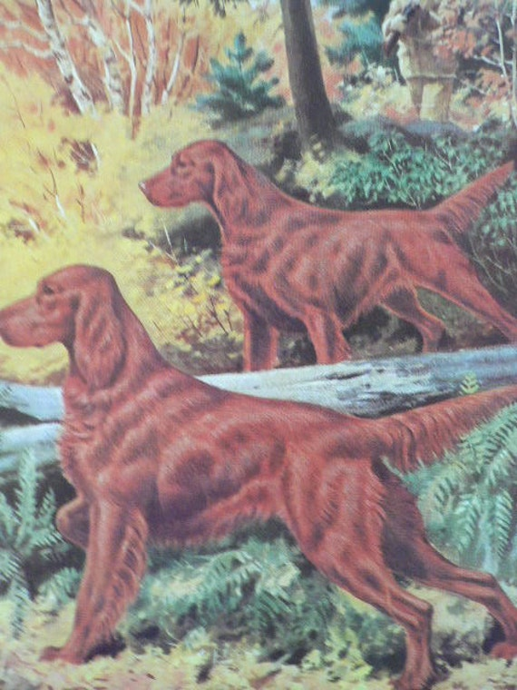 IRISH RED AND WHITE SETTER DOGS AND MAN VINTAGE STYLE DOG PRINT READY MATTED