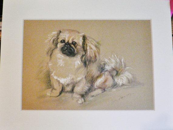SLEEPING PEKINGESE LOVELY 1930/'S DOG ART PRINT by MAC LUCY DAWSON READY MOUNTED