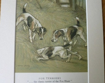1947 FOX TERRIER DOGS Vintage signed original Vernon Stokes mounted dog bookplate print Unique gift Christmas, Birthday, Thanksgiving