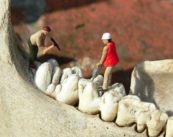 Zahnpfleger – Foto auf Holz