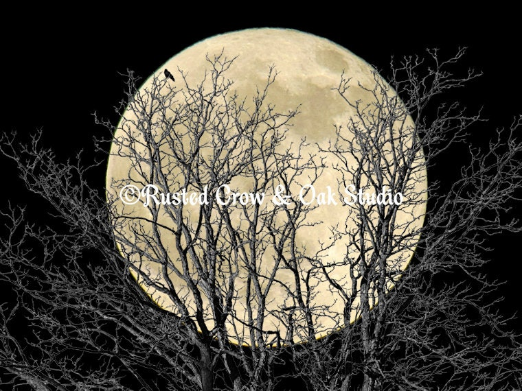 Tree Crow Bird Full Moon Colors Black Home Decor Art Print
