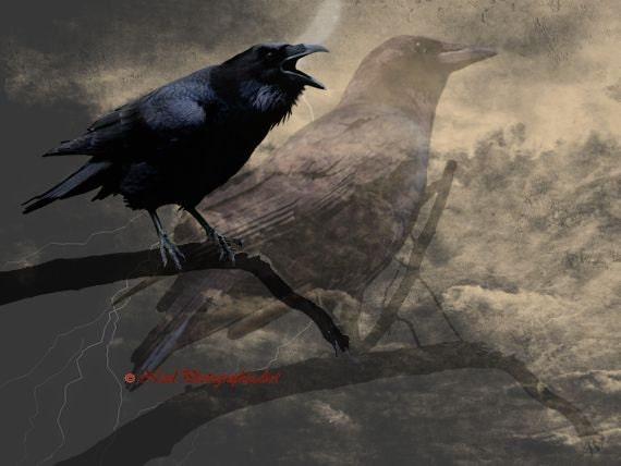 Crow Bird Double Exposure Black Brown Rustic Home Decor