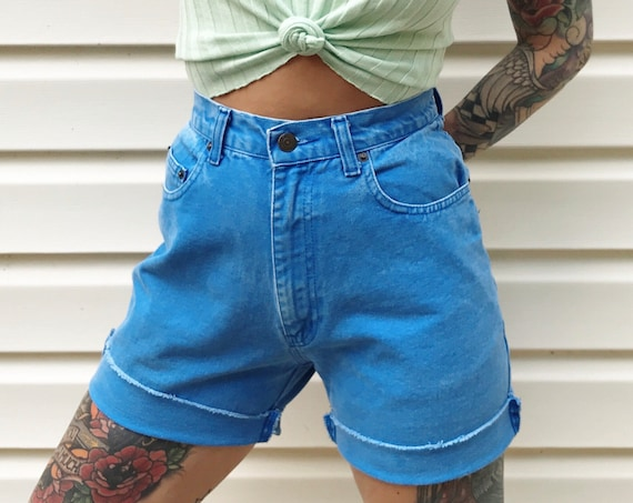 Jordache Periwinkle Blue Denim Shorts / Size 27 28