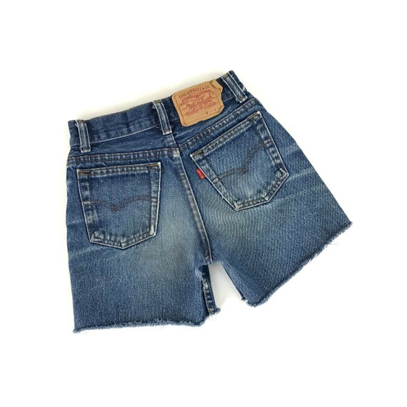 XXS 70's Levi's Cut Off Shorts / Size 21