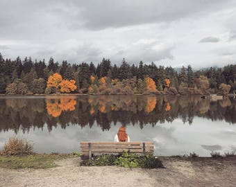 Autumn Lagoon Photography Print -  Lost Lagoon, Vancouver, Red Head