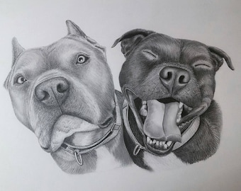 Dog Pencil Portraits ~ Gift Cards Available ~ All Sizes ~ Hand-Drawn with Framing Options