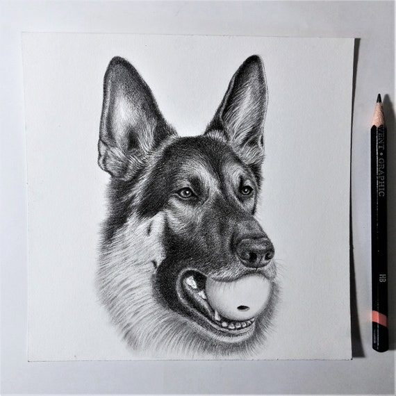 UNFRAMED Dog Portrait DEPOSIT ~ All sizes