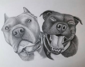 Deposit for Dog Pencil Portraits ~ Gift Cards Available ~ All Sizes ~ Hand-Drawn with Framing Options