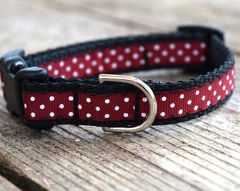 "A&M Polka Dot Pet Collar. 5/8"" wide, available in S and M"